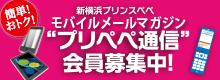 Recruitment of e-mail magazine members