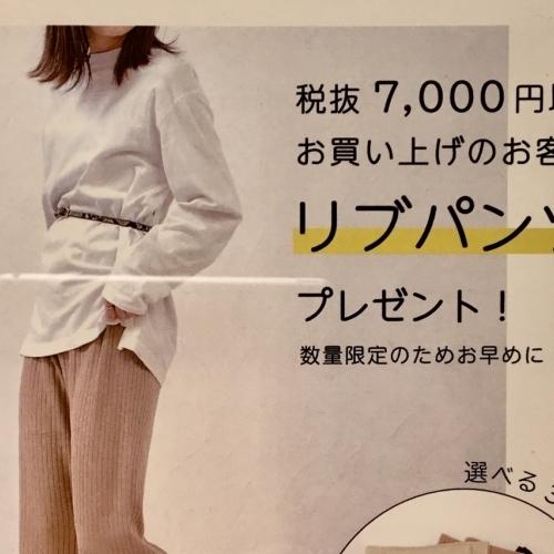 ⭐︎ amount-limited ⭐︎ novelty fair